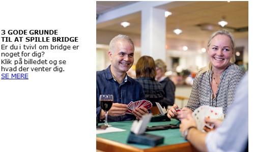Bridgensdag2